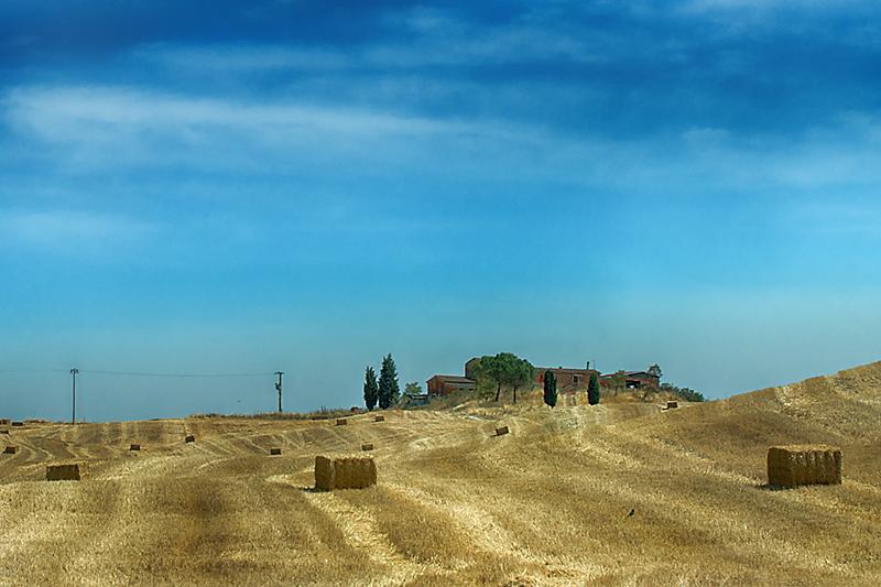 Tuscany Farm in Fields